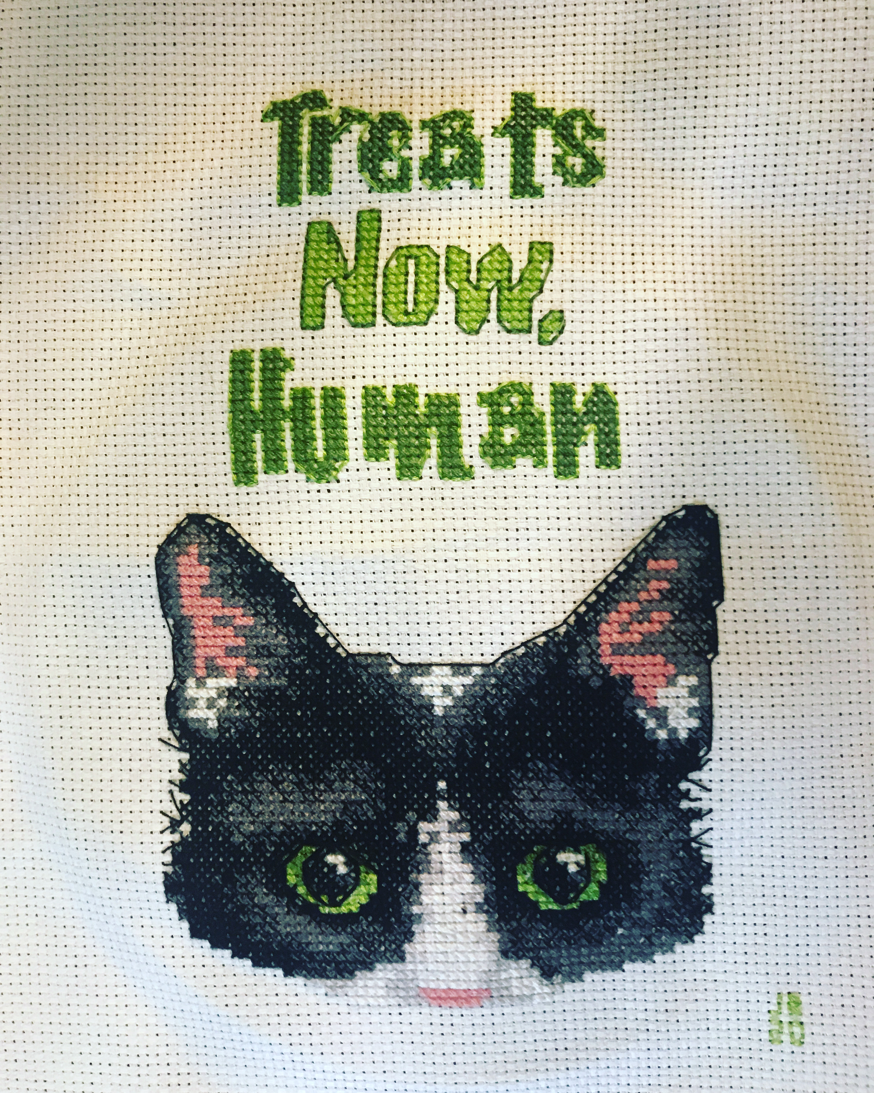 """Cross stitch project featureing a black cat and the words, """"Treats now, human."""""""